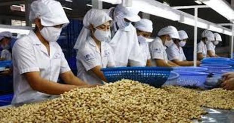 Bình Phước: Giá nông, lâm sản thấp ảnh hưởng đến nguồn thu ngân sách