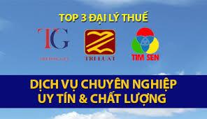 Top 3 Đại lý thuế uy tín tại TP HCM