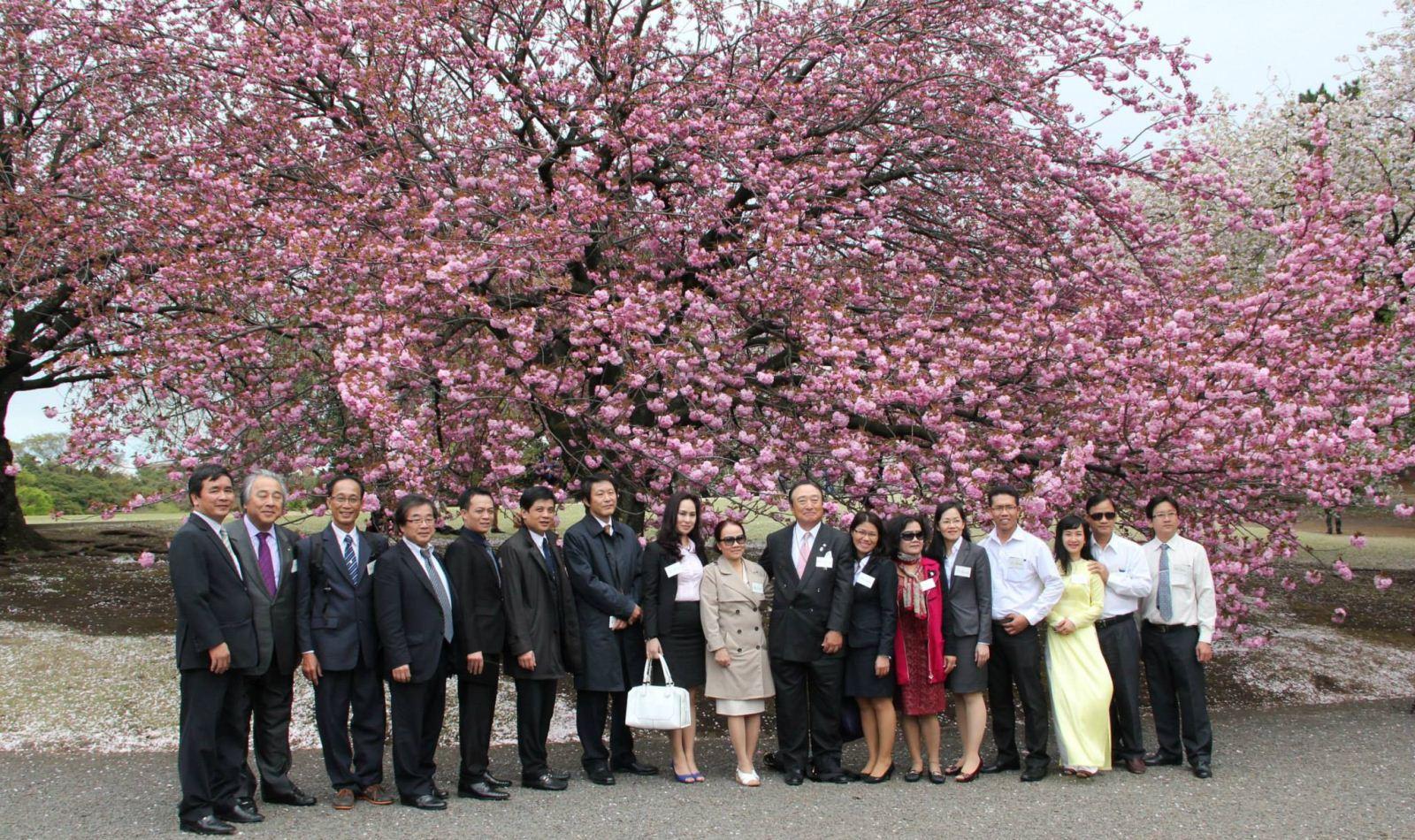 Trí Luật thăm Đại lý thuế Tokyo